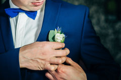 Groom boutonniere fees. Wedding jacket elegance white Stock Photography