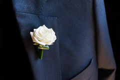 Groom boutonniere royalty free stock image