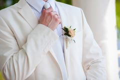 Groom Stock Images