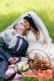 Groom and the bride Royalty Free Stock Photo