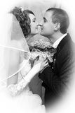 A groom and a bride Royalty Free Stock Images