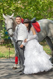 Groom and the bride against a grey horse Stock Photography