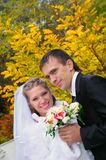 The groom and the bride on an autumn background Royalty Free Stock Images