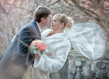 Groom and bride in autumn wedding day Stock Image