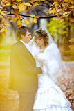 Groom and bride in autumn wedding day Stock Images