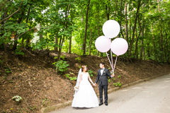 Groom  and bride  with balloons Royalty Free Stock Image
