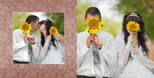 Groom with the bride are closed by sunflowers Stock Images