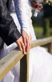 Groom and the bride cost on the wooden bridge Royalty Free Stock Photo