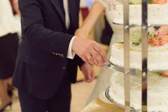 Groom and Bride Cutting Cake Royalty Free Stock Photos