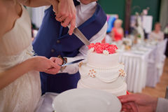 Groom and bride cutting the wedding cake Stock Images