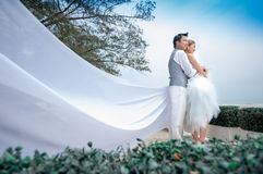 Groom and bride embrace Royalty Free Stock Images