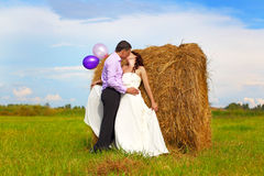 Groom and bride in the field royalty free stock photo