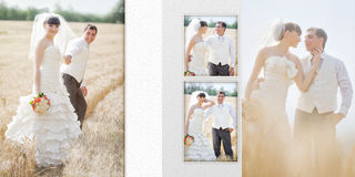 Groom and the bride in the field of wheat in their wedding day Stock Photos
