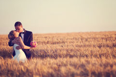 Groom and bride on the fields. On their wedding day Stock Images