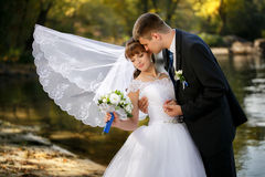 The groom and the bride with a fluttering veil Royalty Free Stock Images