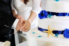 Groom and bride hands cutting wedding cake Royalty Free Stock Photo