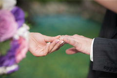 Groom and bride hands Stock Photos