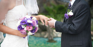 Groom and bride hands Royalty Free Stock Image