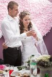 Groom and  bride Royalty Free Stock Photography