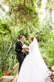 Groom and bride having fun in a tropical jungle under the palm tree. Wedding concept. Stock Photography