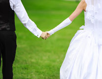 The groom and the bride hold hands royalty free stock image