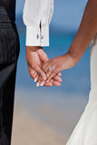 Groom and Bride holding hands. Royalty Free Stock Photo