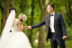 Groom and bride is holding hands on the background green forest. Royalty Free Stock Image