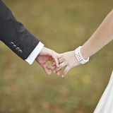Groom and bride holding hands, wedding picture. Royalty Free Stock Photos