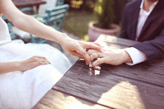 Groom and bride holding hands Royalty Free Stock Photography