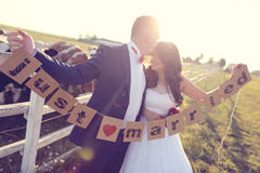 Groom and bride holding Just Married letters. Bride and groom holding Just Married cards, near cow farm royalty free stock image