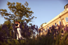 Groom and bride hugging in the city Stock Photo