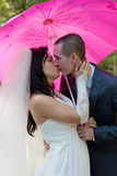 Groom and  bride kiss Stock Photography