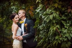Groom and bride is kissing. On the background of foliage Royalty Free Stock Photos