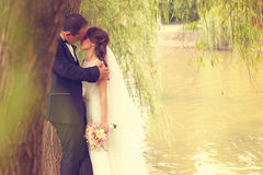 Groom and bride kissing near water Royalty Free Stock Photo