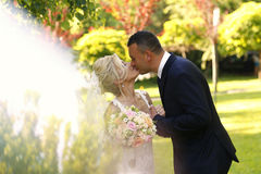 Groom and bride kissing in the park Stock Image