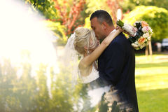 Groom and bride kissing in the park Royalty Free Stock Photography