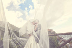 Groom and bride kissing Royalty Free Stock Photos
