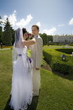 Groom and bride in luxury background Stock Photography
