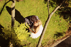 Groom and bride lying on grass Stock Photo