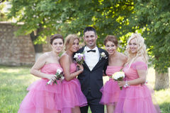Groom and Bride maids. Groom with beautiful Bridesmaids in pink Stock Images