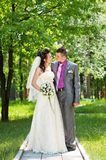 Groom and bride on a nature Royalty Free Stock Photography
