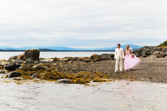 The groom and the bride on nature Royalty Free Stock Photography
