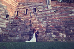 Groom and bride near a brick wall Stock Photography