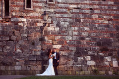 Groom and bride near a brick wall Stock Images