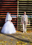 The groom and the bride near an iron lattice Royalty Free Stock Image