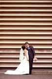 Groom and bride near a stripped wall Royalty Free Stock Image