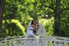 Groom and bride in park  background Stock Images