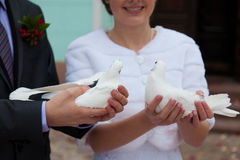 The groom and the bride with pigeons in hands Stock Photos