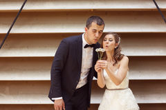 Groom and bride posing near a stripped wooden wall Stock Photography