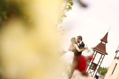 Groom and bride posing outdoor Stock Image